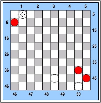 MD diagram 055